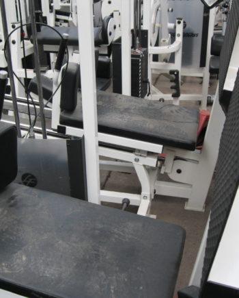 hack squat Life fitness Pro 1